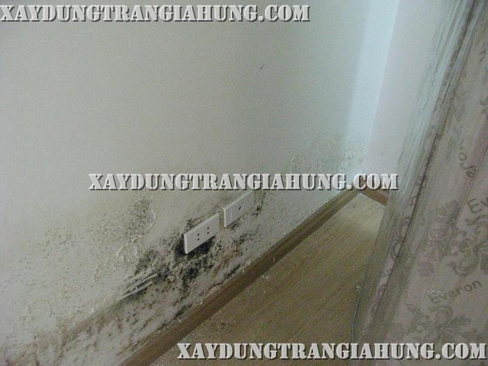 Cách chống thấm tường bị ẩm